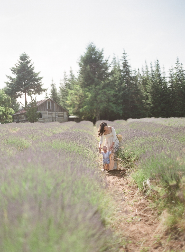 A Lavender Field and My Baby Boy